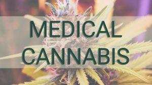 Medical-Cannabis-V2-Green